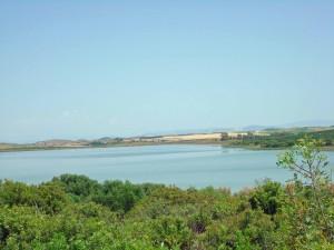 2015-09-03 Laguna de Medina Sidonia