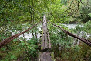 2015-09-21 Mtirala Park Billy